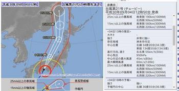 taifu21_result_2018.aug04.jpg